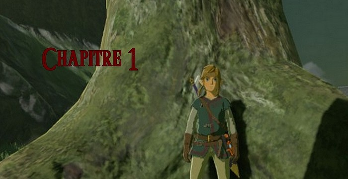 fiction The Legend of Zelda : La malédiction des héros